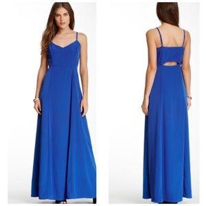 NWT BB Dakota Loulla Maxi Dress